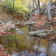 Stock Video: Autumn river