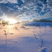 Evening winter plain — Stockfoto