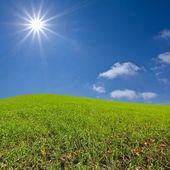 Green rural hills — Stock Photo