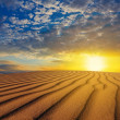 Stock Photo: Sunset over a desert