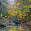 Quiet autumn mountain river — Stock Photo