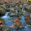 Small swift brook in a autumn mountains — Stock Photo #16184577