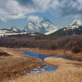 Natural landscape — Stock Photo