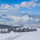 Winter mountain scene — Stock Photo