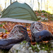 Touristic camp in forest — Foto de stock #18366271