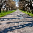 Asphalt road by spring day — Stock Photo #18729859