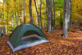 Touristic camp in a forest — Stock Photo