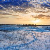 Winter schlicht den Sonnenuntergang — Stockfoto
