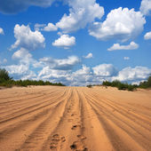 Sandy road in a desert — Stock Photo