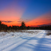 Evening snowbound plains — Stock Photo
