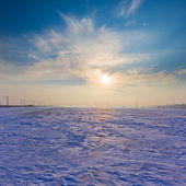 Winter snowbound plain at the pale morning — Stok fotoğraf