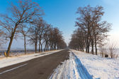 Asphalt road among a winter plains — Foto Stock