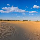 Sand desert scene — Stock Photo