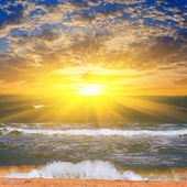 Sandy sea beach at the sunset — Stock Photo