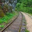Railway in a mountain canyon — Stock Photo