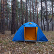 Blue touristic tent in autumn forest — Stock Photo #21336055