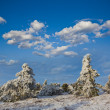 Winter scene — Stock Photo #21336489