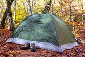 зеленый туристическая палатка в лесу — Стоковое фото