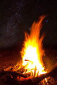 Campfire at the night — Stock Photo
