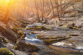 Mountain river in a rays of sun — Stock Photo