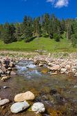 Rushing mountain river — Stock Photo