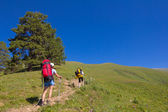 Hikers among a green fields — Stock Photo