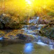 Rushing mountain brook in a rays of sun — Stock Photo