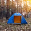 Blue touristic tent in a forest — Stock Photo