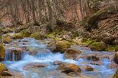 Water cascades on a mountain river — Stock Photo