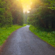 Royalty-Free Stock Photo: Road through a forest