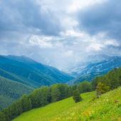 Gröna berg scen — Stockfoto
