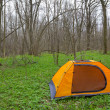 Orange touristic tent in a forest — Stock Photo