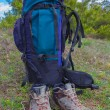 Stock Photo: Touristic boots and backpack