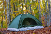 Green touristic tent in a forest — Stock Photo