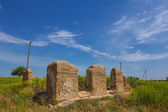 Ruin in a steppe — Stock Photo