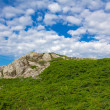 Green summer mountain scene — Stock Photo #27856409