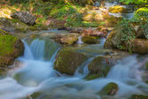 Summer mountain river — Stock Photo