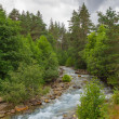 Rushing mountain river — Stock Photo