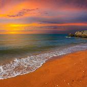 Sea coast sunset — Stock Photo