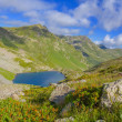 Seven colors lake  caucasus russia — Stock Photo