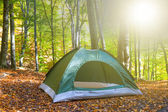Green touristic tent in a forest at the morning — Stock Photo