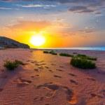 Sea beach at the sunset — Stock Photo #32456989