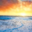 Winter sunset over a steppe — Stock Photo