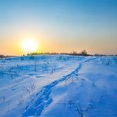 Quiet sunset over an winter plain — Stock Photo