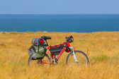 Bicycle in a steppe — Stockfoto