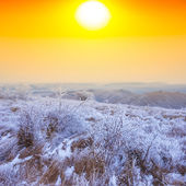 Winter snowbound plain at the sunset — Stock Photo
