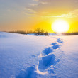 Winter snow desert — Stock Photo #36103029