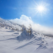 Winter snowbound mountain slope — Stock Photo