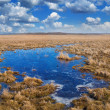 Steppe lake panorama — Stock Photo