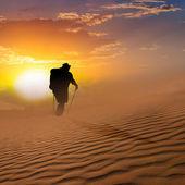 Hiker walk through a sand desert — Stock Photo